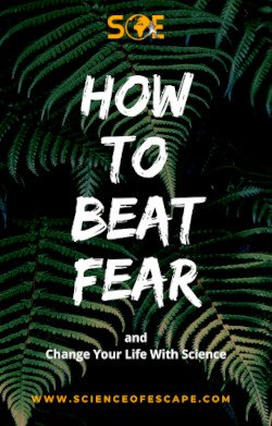 How to Beat Fear eBook